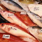 糖質制限中におすすめの食材はこれ!魚介編