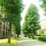 早稲田大学商学部の評判や就職先は良い?卒業生が紹介